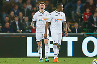 Alfie Mawson of Swansea City rallies his team after Manolo Gabbiadini of Southampton scores his sides first goal of the game during the Premier League match between Swansea City and Southampton at Liberty Stadium, Swansea, Wales, UK. Tuesday 08 May 2018