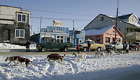 Ed Iten runs down front street in Nome on Wednesday