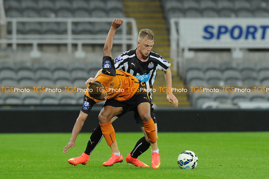 Callum Williams of Newcastle United battles with Carlo Erdei of Wolves - Newcastle United Under-21 vs Wolverhampton Wanderers Under-21 - Barclays Under-21 Premier League Football at St James' Park, Newcastle upon Tyne - 15/09/14 - MANDATORY CREDIT: Steven White/TGSPHOTO - Self billing applies where appropriate - contact@tgsphoto.co.uk - NO UNPAID USE