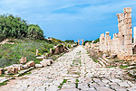 A street in the ancient city of Leptis Magna in Libya.