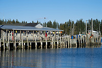 Dock with Lobster Buoys