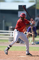Arizona Diamondbacks outfielder Justin WIlliams (19) during an Instructional League game against the Chicago Cubs on October 5, 2013 at Salt River Fields at Talking Stick in Scottsdale, Arizona.  (Mike Janes/Four Seam Images)