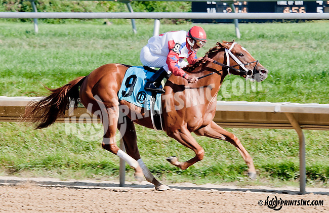 Weekend for Love winning  at Delaware Park on 9/5/13