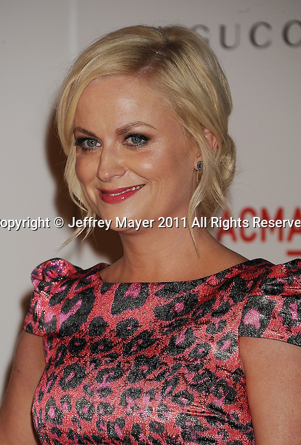 LOS ANGELES, CA - NOVEMBER 05: Amy Poehler attends LACMA's Art And Film Gala Honoring Clint Eastwood And John Baldessari at LACMA on November 5, 2011 in Los Angeles, California.