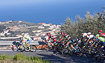 The peloton climb the Cipressa during the 2016 Milan-San Remo race, running 293km from Milan to San Remo, Italy. 19th March 2016.<br /> Picture: ANSA/Claudio Peri | Newsfile<br /> <br /> <br /> All photos usage must carry mandatory copyright credit (© Newsfile | Claudio Peri)