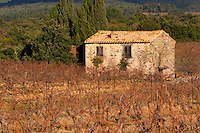 Chateau Villerambert-Julien near Caunes-Minervois. Minervois. Languedoc. A tool shed hut in the vineyard. France. Europe. Vineyard.