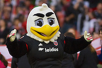 DC United's mascot, Talon, before DC's match against I-95 Rivals NY Red Bull. Red Bull NY rallied back to tie DC United 2-2 at RFK Stadium in Washington D.C. on Saturday April 11, 2015.