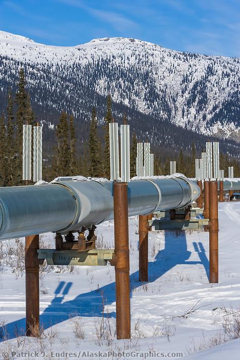Trans Alaska oil pipeline near Wiseman, Alaska. Heat fins help reduce permafrost melting.