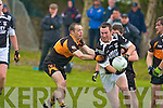 Austin Stacks Mikey Collins and Ardfert's Darren Dineen.