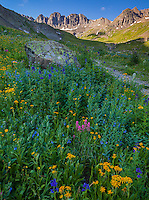 San Juan Mountains, CO<br /> Morning light on American Basin with wildflower meadows beneath Handies Peak