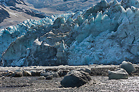 Tidewater face of the Harriman glacier, Harriman Fjord, Prince William Sound, southcentral, Alaska.