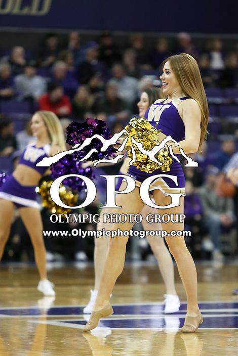 SEATTLE, WA - DECEMBER 18: Washington cheerleader Allie Bruener entertained fans during a timeout break against Western Michigan.  Washington won 92-86 over Western Michigan at Alaska Airlines Arena in Seattle, WA.