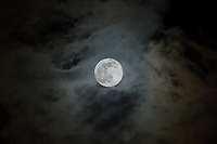 Full moon on a cloudy autumn evening over Lake Talquin State Forest in North Florida.