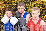 PUNCHING ABOVE THEIR WEIGHT: North Kerry boxers Tiernan Ball, Thomas O'Sullivan and Niall O'Sullivan who have qualified for the All-Ireland boxing finals in their respective weight categories.