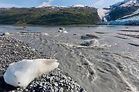 River flowing out of the Harriman glacier, Harriman Fjord, Prince William Sound, southcentral, Alaska.