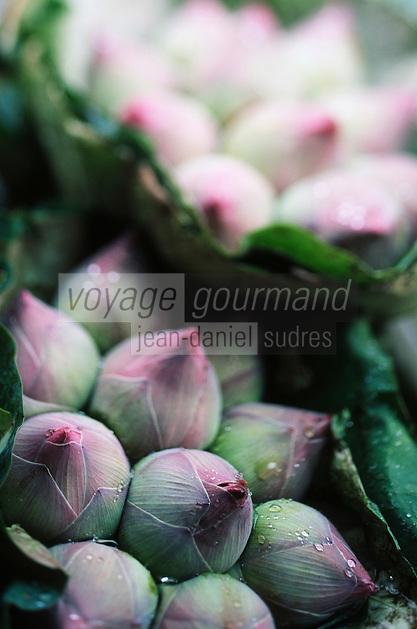 Thaïlande/Bangkok: Marché Parklong Talad - Détail d'un étal de fleurs de lotus
