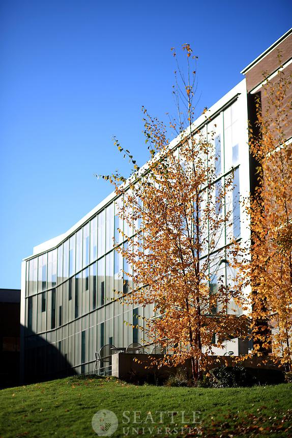 November 25th, 2015-  Fall Campus Scenes
