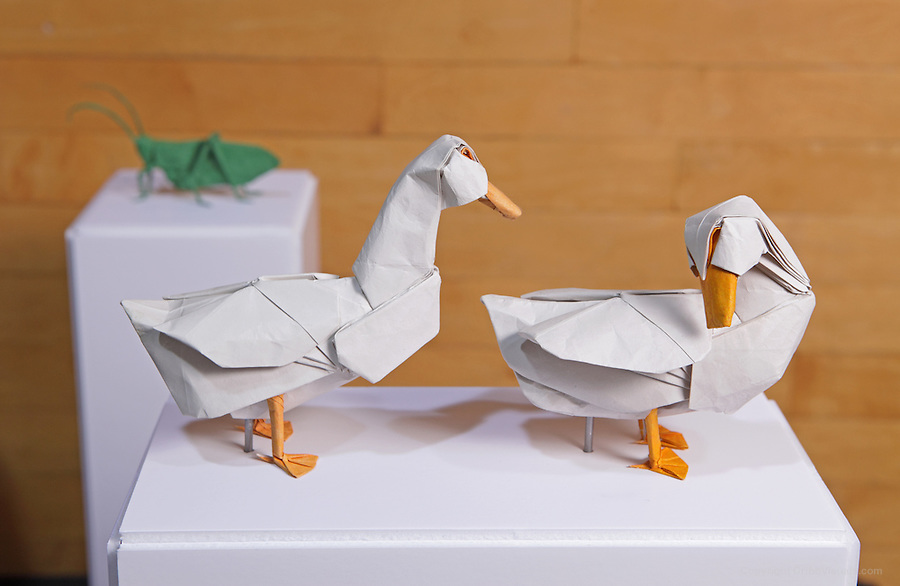 OrigamiUSA 2014 exhibition. Origami ducks designed by Seth Friedman