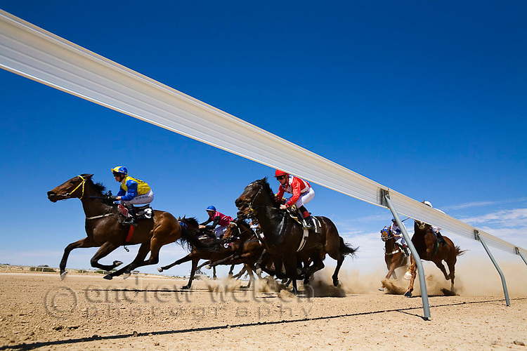 The horses round the last bend on the dirt track at Birdsville during the Birdsville Cup Races.  Every September thousands of horse racing enthusiasts arrive in the small outback town for the famous bush races.  Birdsville, Queensland, AUSTRALIA.