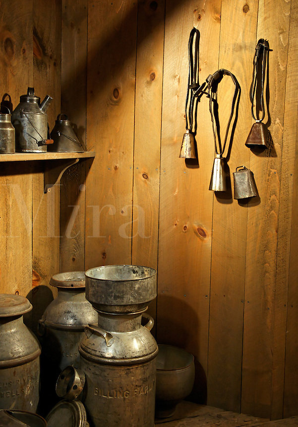 Display of milking equipment, Billings Farm & Museum, Woodstock, Vermont, US