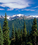 Olympic National Park, WA<br /> Snow capped summit of Mount Olympus above the Ho River valley from the High Divide trail