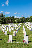 65095-02814 Gravestones at Jefferson Barracks National Cemetery St. Louis, MO