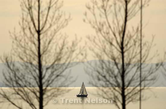 Sailboat and tree at the Great Salt Lake<br />