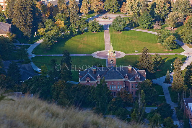 The University of Montana campus at the Oval