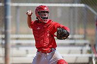 St. Louis Cardinals catcher Benito Santiago during a Minor League Spring Training Intrasquad game on March 28, 2019 at the Roger Dean Stadium Complex in Jupiter, Florida.  (Mike Janes/Four Seam Images)