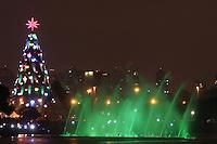 SAO PAULO SP, 08.12.2013 - INAUGURAÇÃO DA ARVORE DE NATAL IBIRAPUERA - Inauguracao da arvore de Natal do Parque do Ibirapuera com 58 metros de altura, na noite deste domingo. 08. (Foto: Vanessa Carvalho / Brazil Photo PRess).