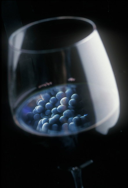 Cabernet grapes reflected in glass of Cabernet
