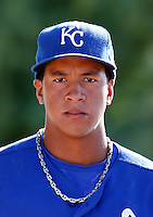Cheslor Cuthbert - Kansas City Royals 2009 Instructional League. .Photo by:  Bill Mitchell/Four Seam Images..