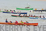 Action from the Cromane regatta on Saturday