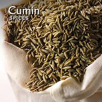 Cumin Pictures | Cumin Food Photos Images & Fotos