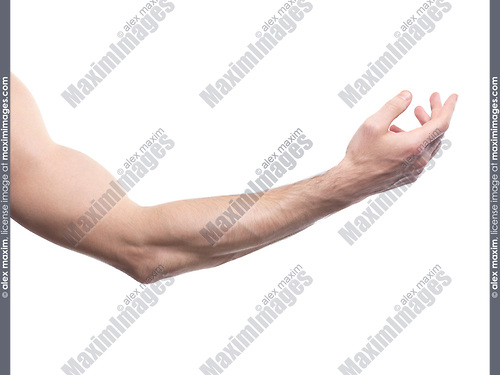 Man's arm bent at an elbow isolated on white background