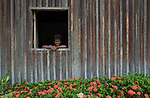 A man sits in the window of his house in Quilombo Bom Jardim near Santarem, Brazil.