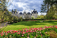 France, Loir-et-Cher (41), Cheverny, château et jardin de Cheverny en avril, le jardin des apprentis, massif de tulipes