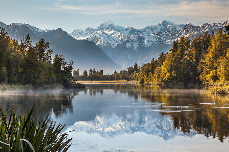 Misty morning at Lake Matheson,  South Westland / Westland Tai Poutini National Park New Zealand.