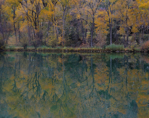 A pond reflects the autumn colors at a pond in the Colorado Rocky Mountains