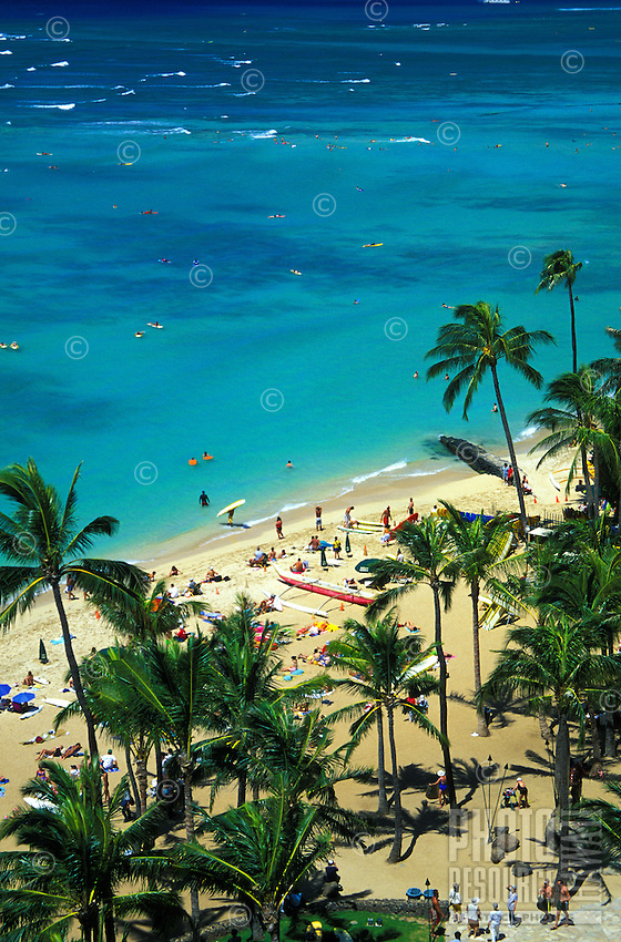 Palms and people at Waikiki beach at Oahu