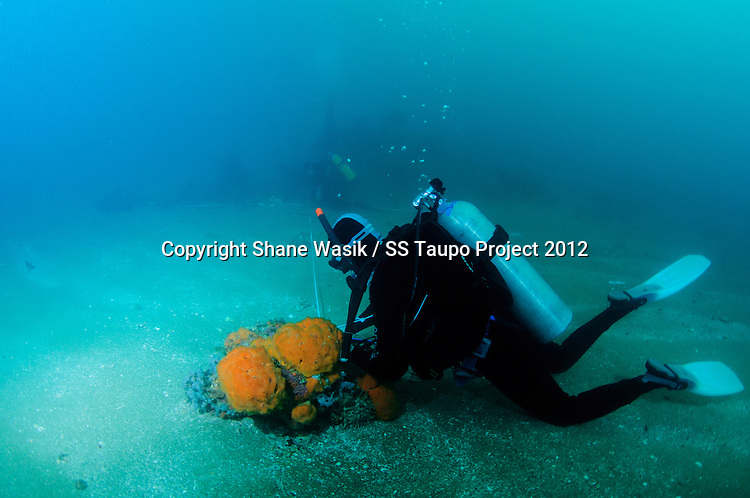 Divers taking offset measurements near the stern of the SS Taupo. (Photo by Shane Wasik Photography)