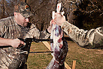 January 2, 2012. Chapel Hill, NC.. (left to right) Chris Mostiller and Boo Huskins, of Marion, NC, cut up a buck on the racks out back of Norman's Deer Processing & Sausage Making. Hunters who bring deer for processing must skin and clean the deer before Norman takes it for curing and butchering.. Norman's Deer Processing & Sausage Making has been serving private customer's for over 20 years. Hunters bring their deer in to be processed into all cuts of venison and several types of sausage.