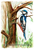 Kris, REALISTIC ANIMALS, REALISTISCHE TIERE, ANIMALES REALISTICOS, paintings+++++,PLKKE580,#a#, EVERYDAY ,birds