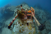A B-25 Mitchell Bomber plane wreck, Madang, Pacific Ocean, Papua New Guinea