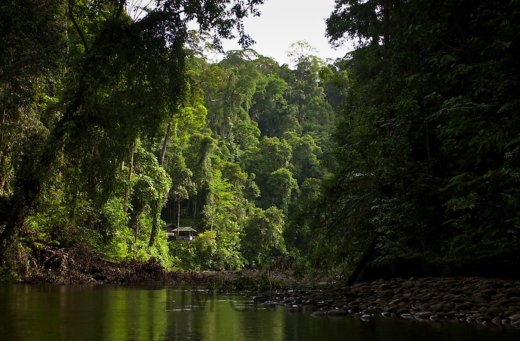 Ulu Temburong National Park, Brunei