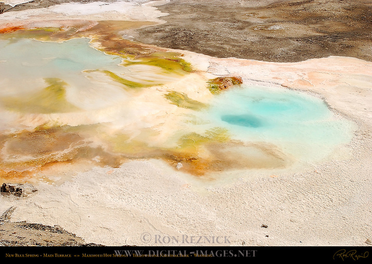 New Blue Spring, Main Terrace, Mammoth Hot Springs, Yellowstone National Park, Wyoming