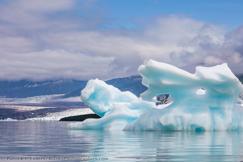 Icebergs in the Grand Plateau lake and glacier, Glacier Bay National Park, Southeast, Alaska