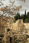 Israel, Jerusalem, Pools of Bethesda by the Church of St. Anne, ruins of a Crusader Chapel and a Byzantine Basilica