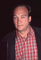JIm Belushi 1996 By Jonathan Green