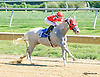 Molten Steel winning at Delaware Park on 9/14/15
